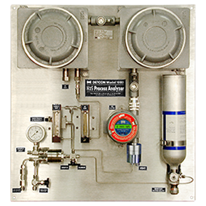 Model 1000 H2S Gas Analyzer
